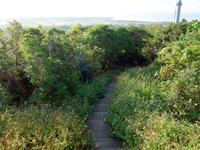 小浜島の大岳の展望台/小浜節の碑 - 展望台までの階段越しに見る集落方向