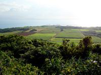 小浜島の大岳展望台からの景色 - 小浜港がある東側の景色