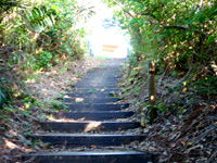小浜島の大岳/うふだき - 山頂までは結構な段数です