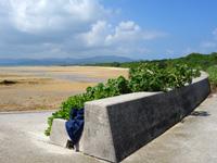 小浜島の南風花海岸・東