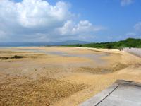 小浜島の南風花海岸・東 - 干潮時は広大な干潟になります