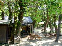 小浜島のお食事・居酒屋 やらます - トゥマールビーチへ行く途中にあるお店