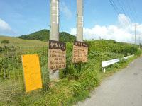 小浜島のがちまやぁ - 大岳脇の道に案内板有り