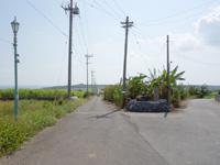 小浜島のシュガーロード/ちゅらさんロケ地 - 左がロケ地のシュガーロード、右が第2シュガーロード?