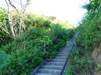 小浜島のカトレ展望台/ヒルギ入口の写真