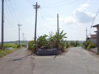 小浜島の第2シュガーロード - 小浜集落から左が第1、右が第2らしい