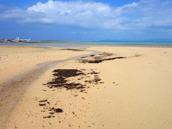 トゥマールと小浜港の間のビーチ