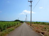 小浜島のはいむるぶし前の道