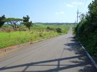 小浜島の第3シュガーロード/小浜ハイウェイ - 中間部分は本家の印象に近い下り坂