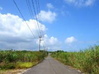 小浜島の第3シュガーロード/小浜ハイウェイ - 後半はアップダウンが少しあります
