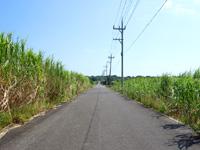 小浜島の第3シュガーロード/小浜ハイウェイ - 終盤のはいむるぶしまでの道はまさにシュガーロード