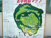 古宇利島の古宇利ふれあい公園/あやかりの里 くい島の写真
