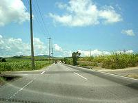 沖縄本島離島 屋我地島ののどかな道路の写真