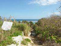 古宇利島のピース浜/北のビーチの写真