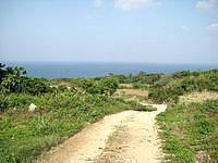 古宇利島の高台の古宇利集落の道 - 味がある道が多いです