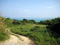 古宇利島の高台の古宇利集落の道 - 散策にはかなり楽しめるかも?