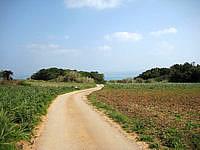古宇利島の高台の古宇利集落の道 - 舗装路もあります