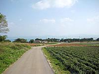 古宇利島の高台の古宇利集落の道 - 島中央の集落から港側へ行く道はいい感じ