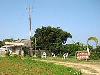 古宇利島の菜園カフェ・ぶどうの樹