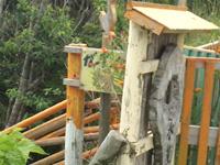 屋我地島のガーデンカフェ縁 - ガーデン縁の文字は一応・・・