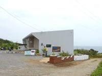 古宇利島のTurtoise/タータス