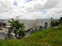 古宇利島の琉球ドルチェ古宇利島テラス/手作り貝がら体験工房の写真
