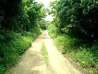 久高島の久高島の道