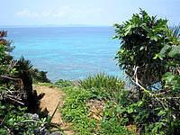 久高島の久高島北側の道 - こんな景色は至る所で見られます