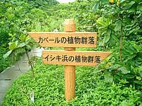 久高島のウパーマ - この左側の側溝蓋の上を歩いて行くとたどり着けます