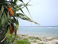 久高島のたち浜/立浜
