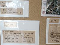 久高島の徳仁港待合所/カフェ/レンタサイクル - レンタサイクルなどのその他のメニュー