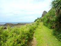 久米島のタチジャミ自然公園/久米島県立自然公園 - 階段を降りた先の遊歩道も長い