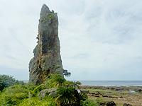 タチジャミ/立岩/立神