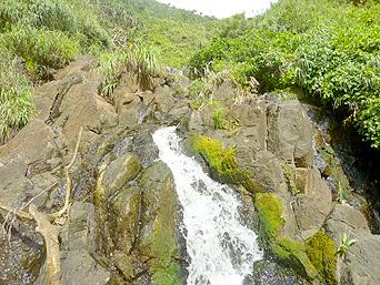 久米島のタチジャミの滝「水落のすぐ近くまで行けます」