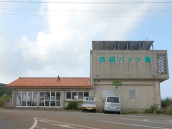久米島の赤嶺パイン園「きれいな建物です」