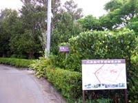 久米島の上江洲家 - この石垣もとってもきれい