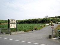 久米島のやちむん土炎房 - 県道からの入口はここですが遠い・・・