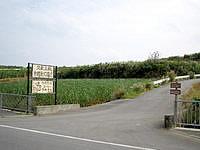 久米島の久米島焼 ナカムラ陶芸/中村康石陶房/カフェ/ギャラリー - 県道からの入口はここですが遠い・・・