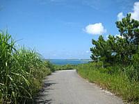 久米島のアーラ浜への道 - まさに青い海に向かう道