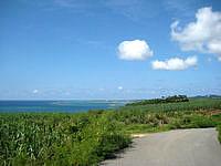 久米島のアーラ浜への道 - ビーチまでの行きでは望めない景色