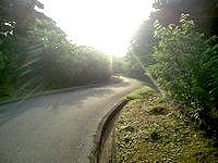 久米島のアーラ林道/阿良林道 - 峠越えの道のようです