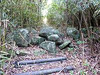久米島のだるま山 - うっそうとした道を進みます