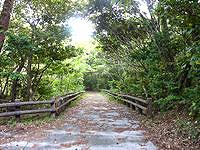 久米島のだるま山園地 - 公園内の道