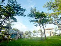 久米島のだるま山園地 - 道路の反対側には遊具がある公園あり