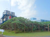 久米島の海洋深層水研究所/ふれあい館/海洋温度差発電プラント - 周辺には様々な施設がある