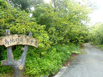 久米島の島の森 散歩道/白瀬揚水機場/白瀬ダム「大きな案内看板があるのにその先には・・・」