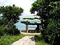 来間島のガジュマル展望台