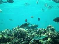 来間島の長間浜海中 - 深さは少しあり、流れもあるので注意!