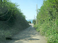 来間島の来間島一周道路 - 来間港へ下る交差点へと向かう道