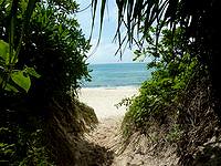 来間島の長間浜南駐車スペース - 駐車スペース先のビーチ入口